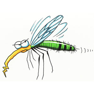 Mosquito _Natural_remedies_to_keep_them_away